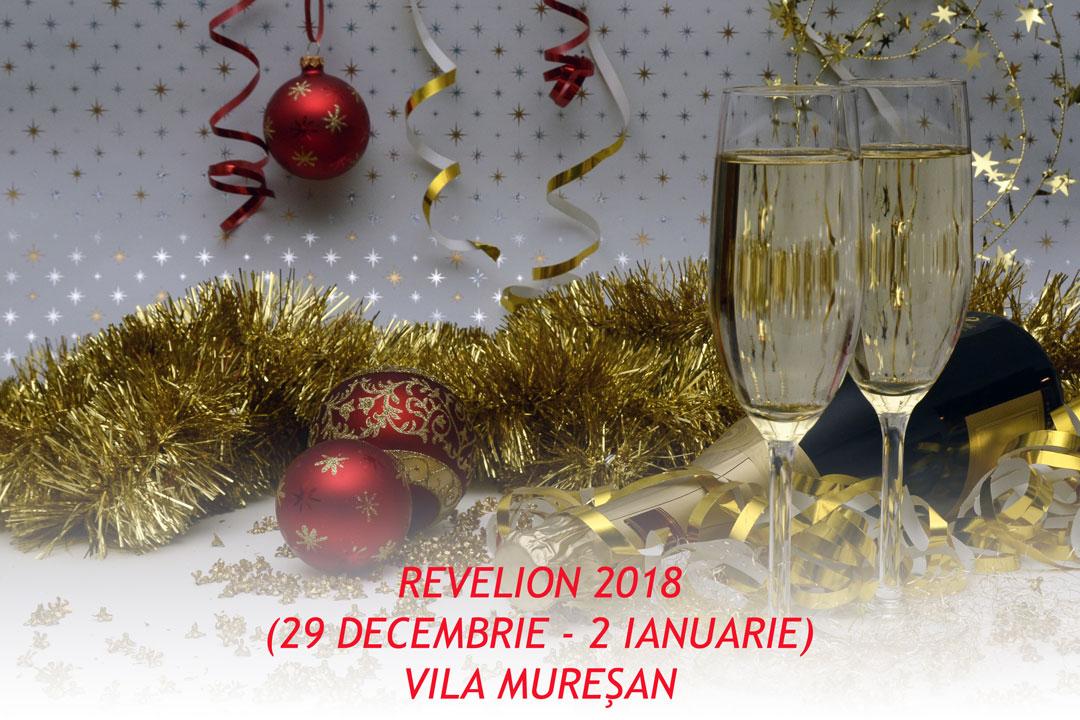 REVELION-MURESAN-EDITABIL