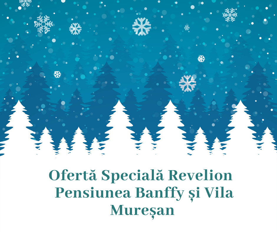 Ofertă Craciun și Revelion la Pensiunea Banffy și vila Mureșan (1)